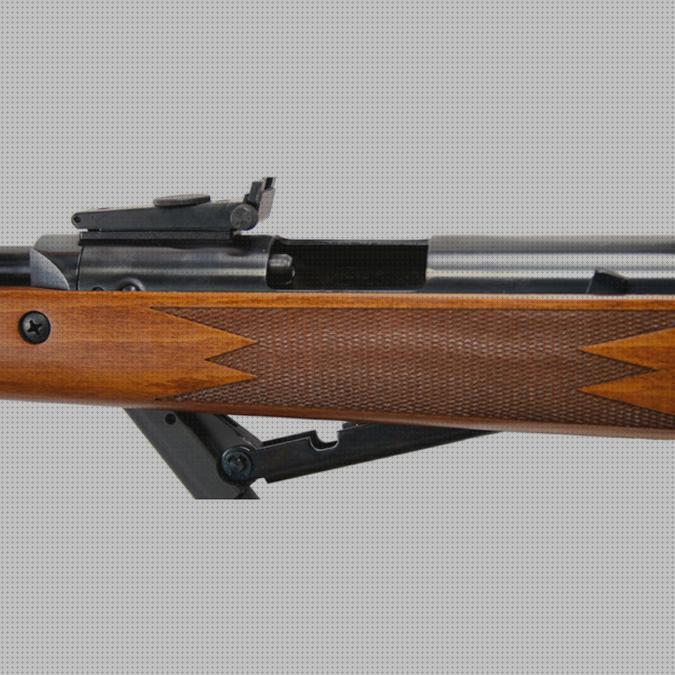 Review de rifle de aire diana 460 magnum