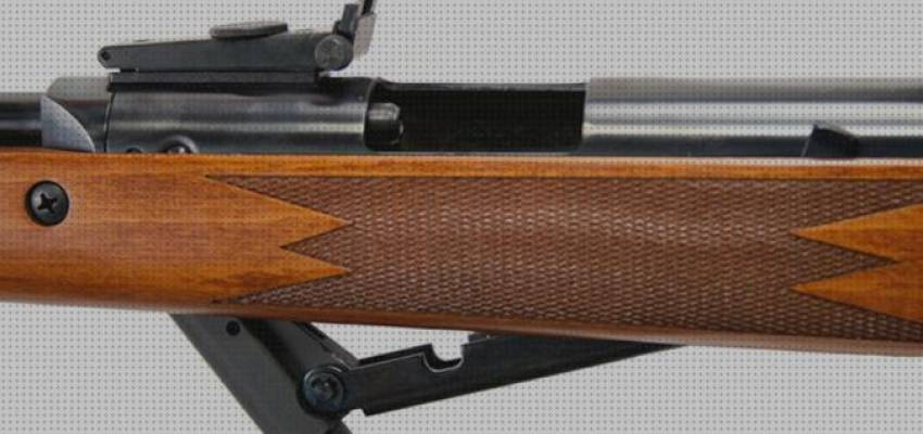 Top 7 Rifle De Aire Diana 460 Magnum